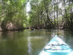 Costa Rica Kayaking Tours