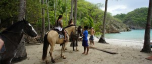 Horseback Riding Tortuga Island
