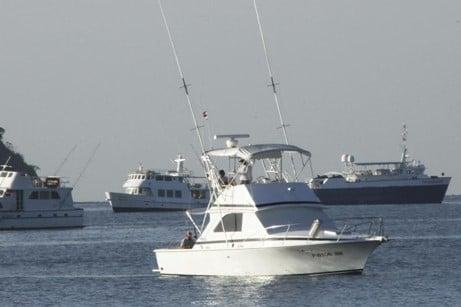 Jaco Beach 39 ft Charter
